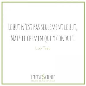 """Le but e(s)t le chemin : """"Le but n'est pas seulement le but, mais le chemin qui y conduit"""" (Lao Tseu)"""