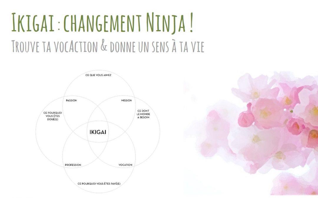 Trouve ta vocAction de Ninja du changement avec l'Ikigai