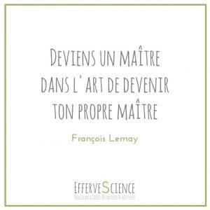 Deviens un maître dans l'art de devenir ton propre maître-François Lemay