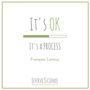 It's OK It's a PROCESS-François Lemay