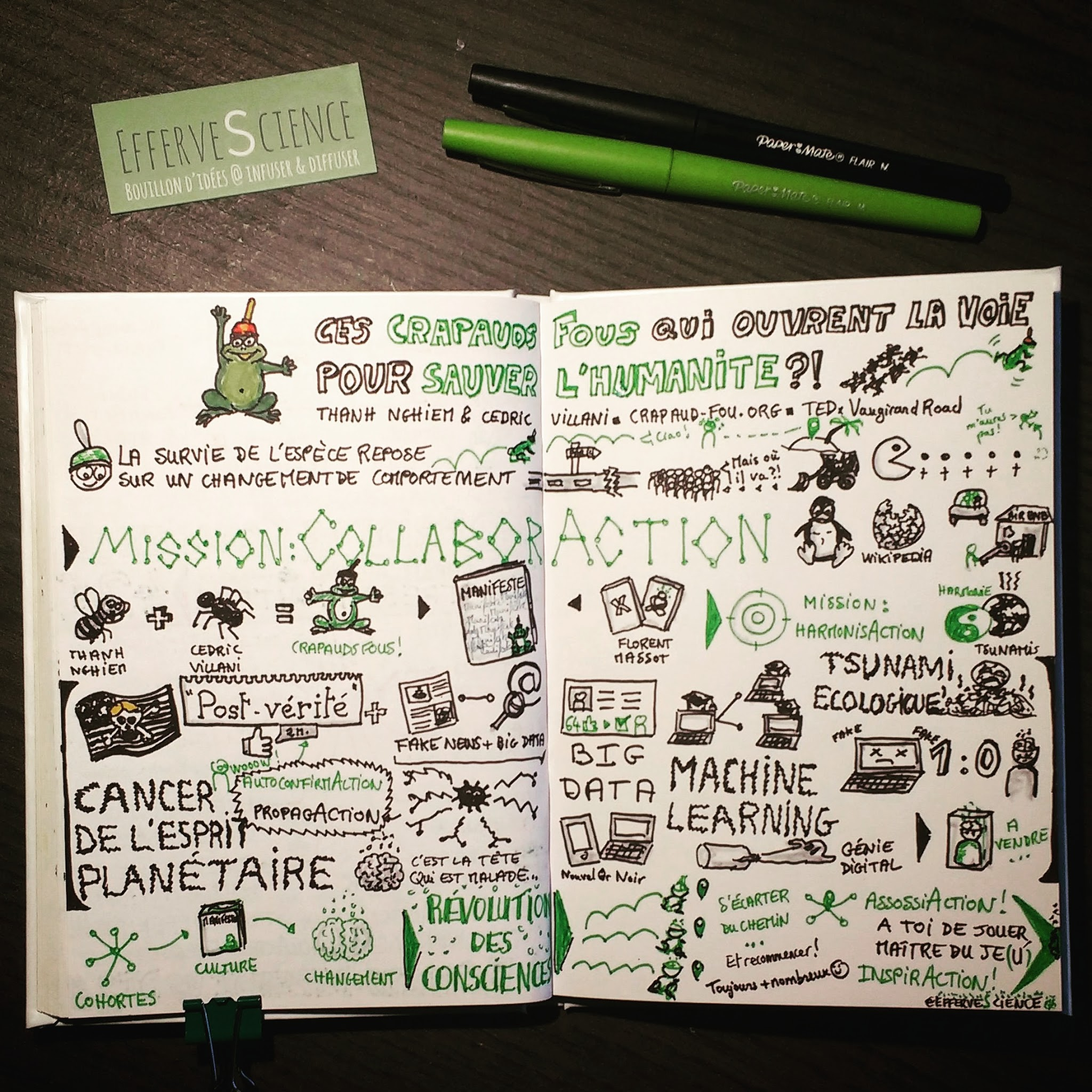 Sketchnote TEDx Crapauds Fous