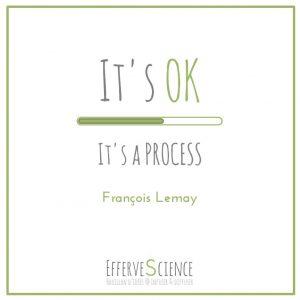 It's OK It's a PROCESS-François Lemay