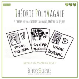 Théorie PolyVagale, les fiches perso : vagal ventral, sympathique, vagal dorsal, à choisir et combiner pour devenir un Maître du Je(u) !