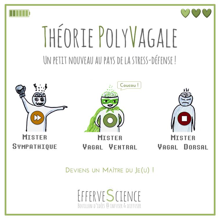 Théorie PolyVagale, les fiches perso : vagal ventral, sympathique, vagal dorsal